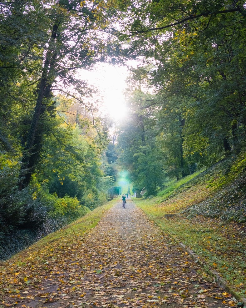 picture of path near Deer Moat Pedestrian Trail in Prague