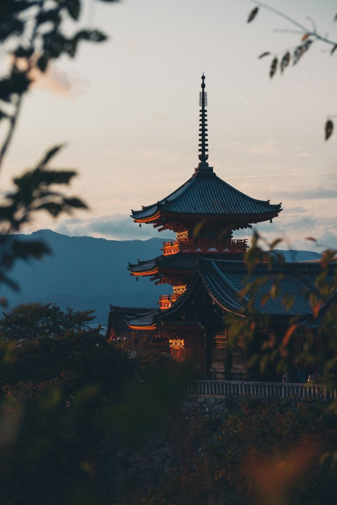 image of a kyoto shrine shot through the leaves