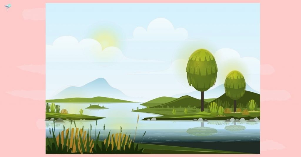 illustration of marshland