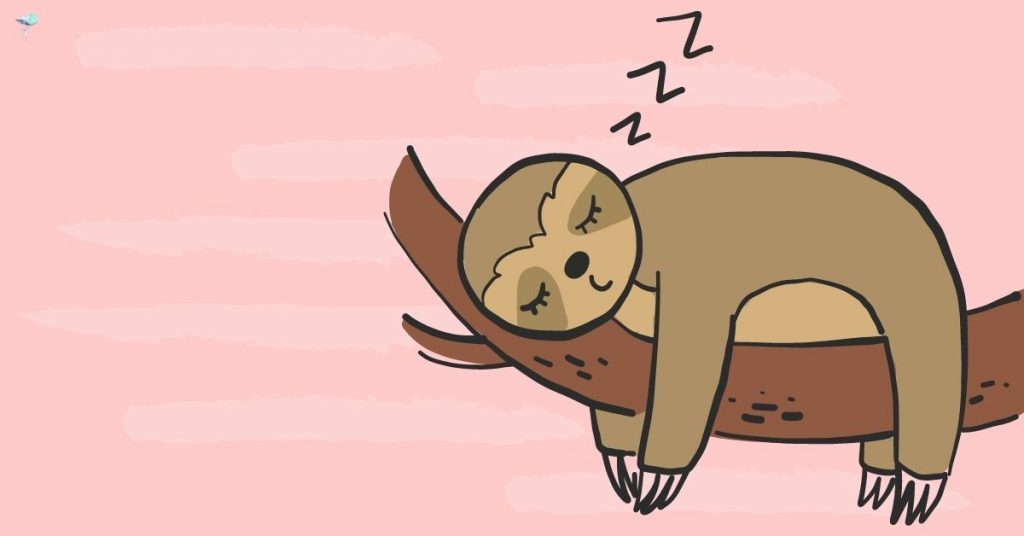 illustration of a sloth sleeping on a branch