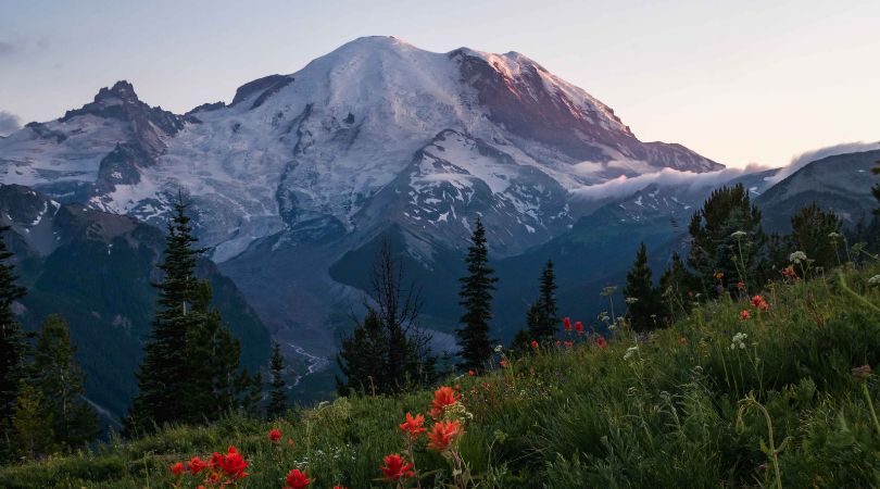 most-interesting-facts-about-mount-rainier-cover