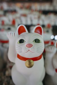 picture of maneko neki cats at gotokuji temple in japan