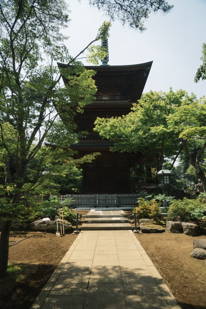 photo of gotokuji temple