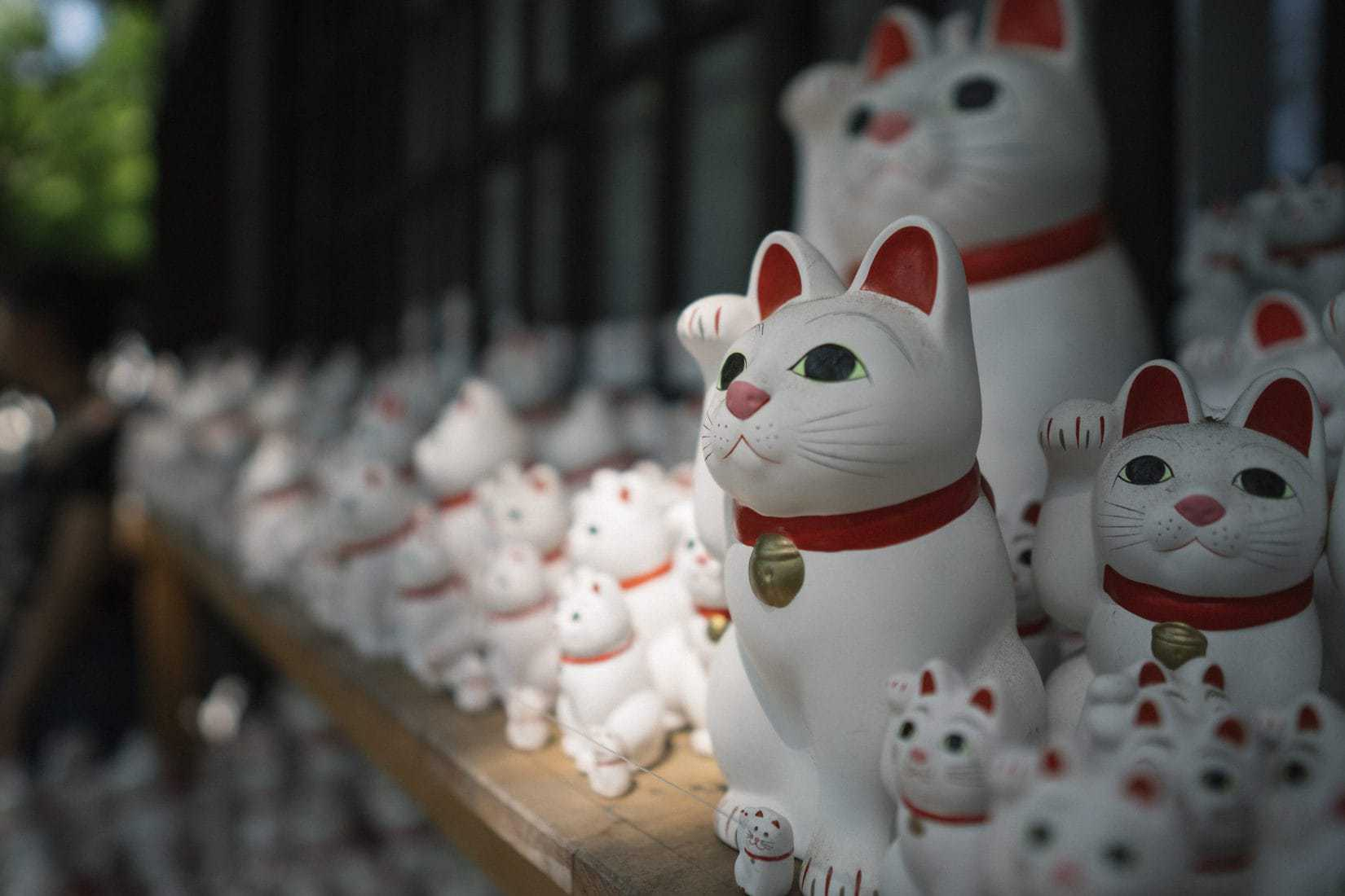 photo of many maneki neko cats at gotokuji temple near tokyo