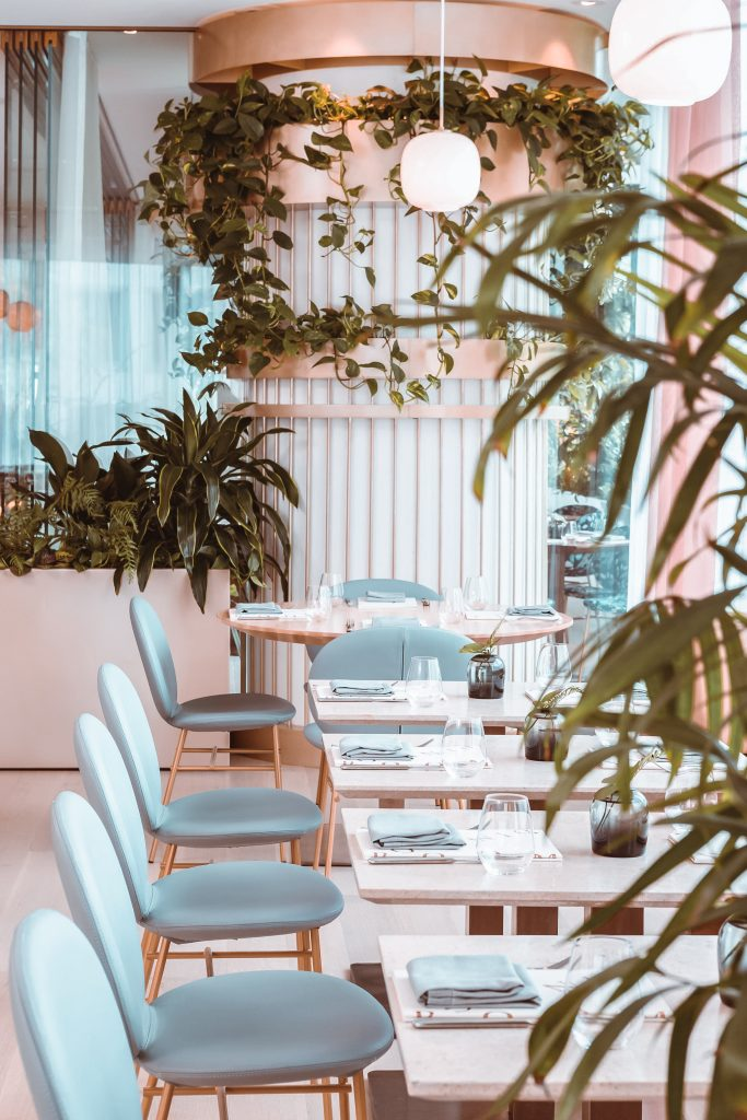 Row of light blue chairs and tables in restaurant with plants