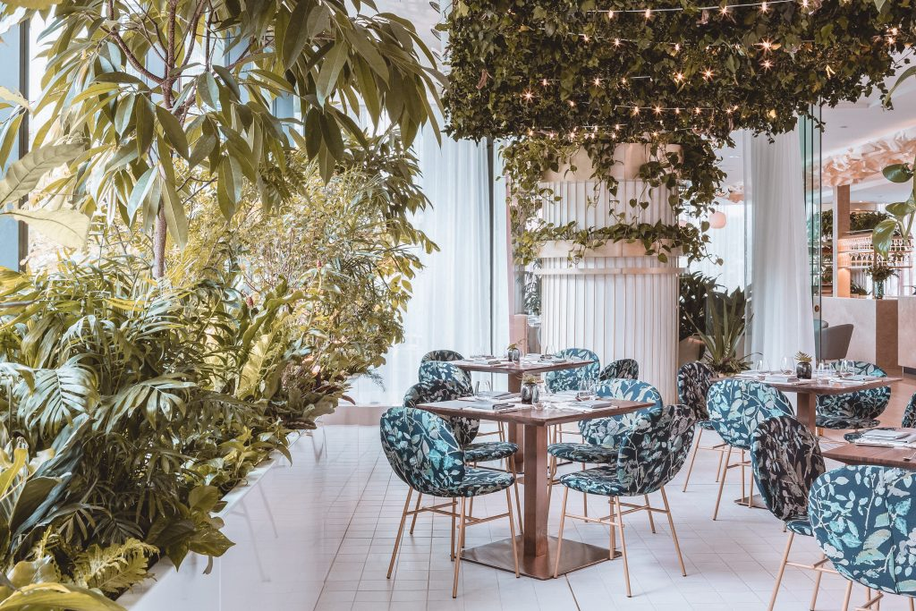 Dining space decorated with plants and blue patterned chairs