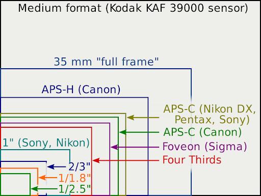 illustration of different camera sensor sizes
