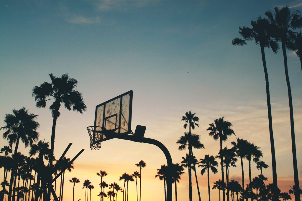 silhouette of basketball hoop with palm trees