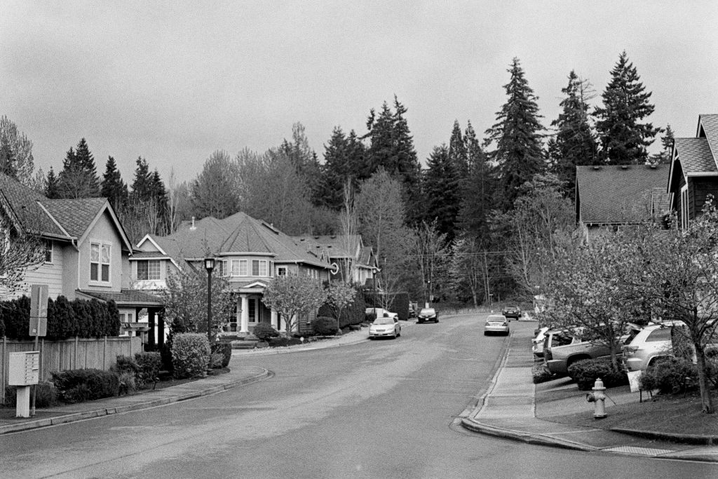 image of suburb in black and white