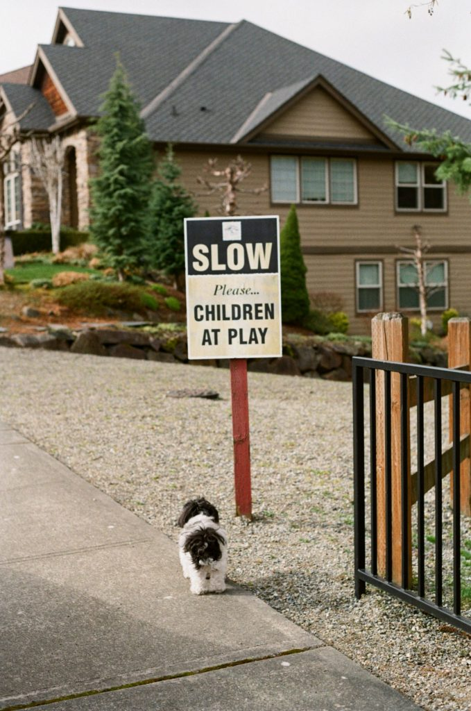 dog in front of sign