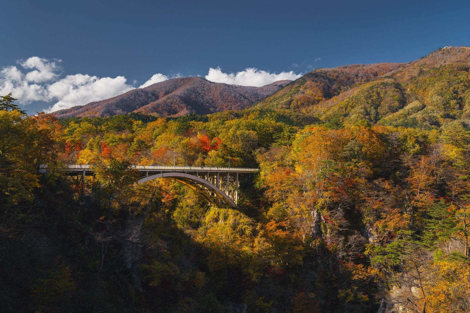 image of fall colors with bridge