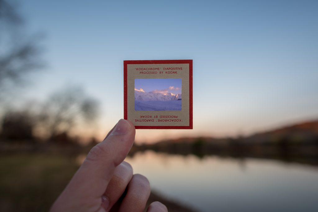 photo of slide film in front of nature scene