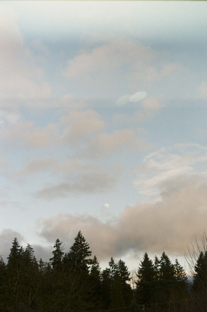 image of tree line with clouds and moon