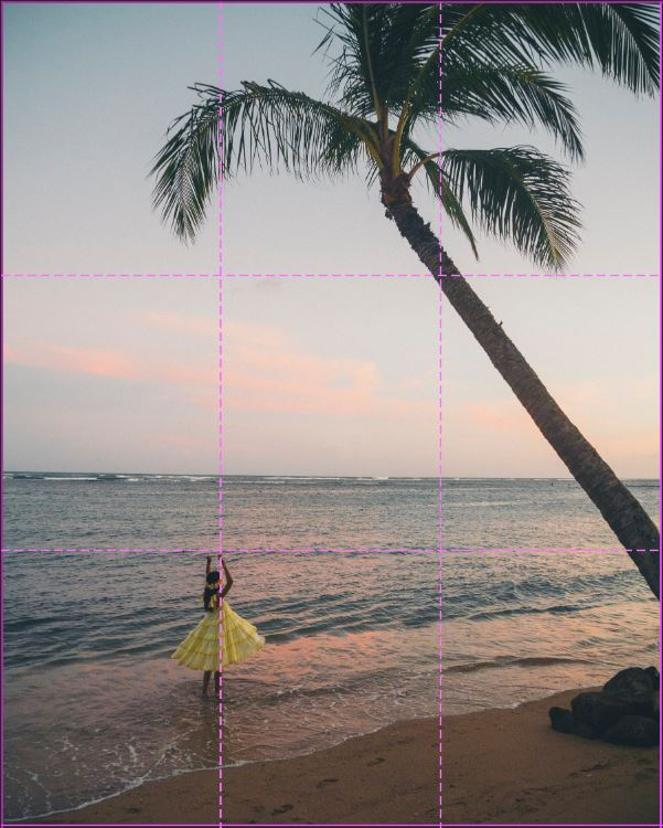 image of a girl in a yellow dress twirling under a palm tree with rule of third grid overlayed