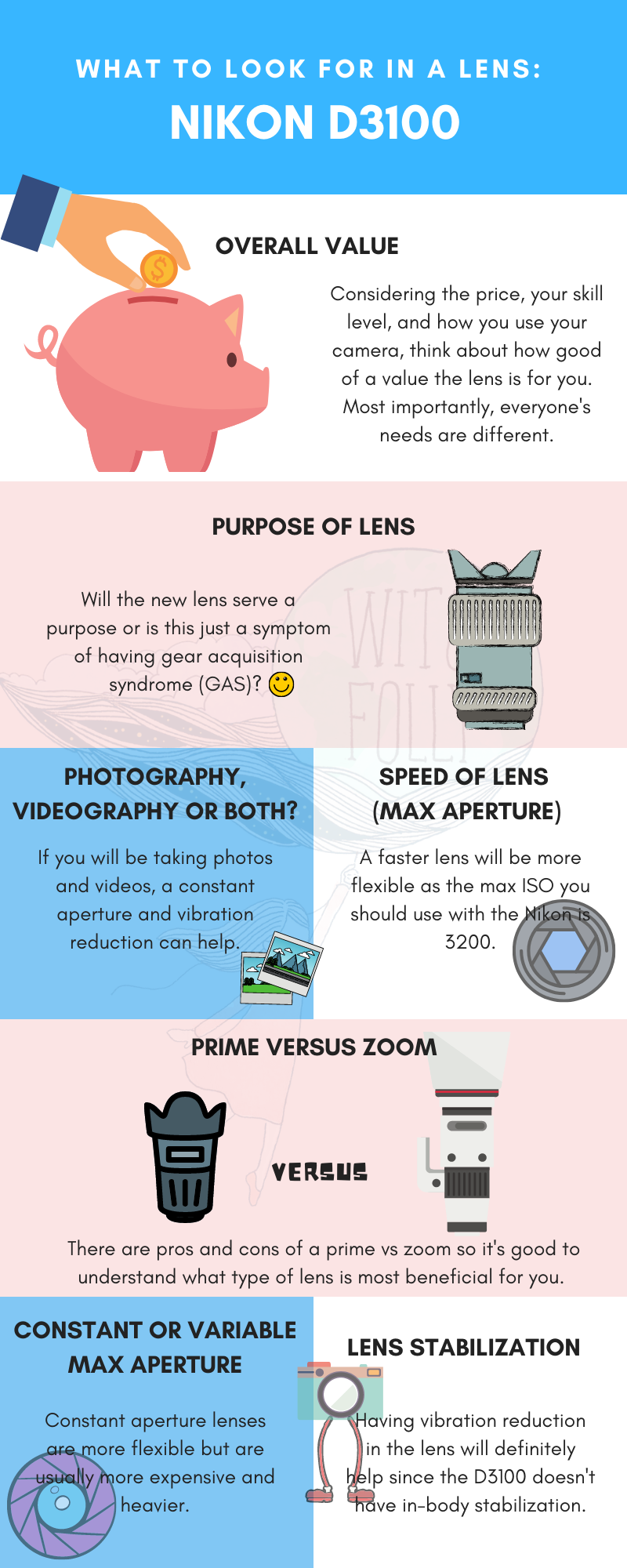 illustration of what to look for in a d3100 lens