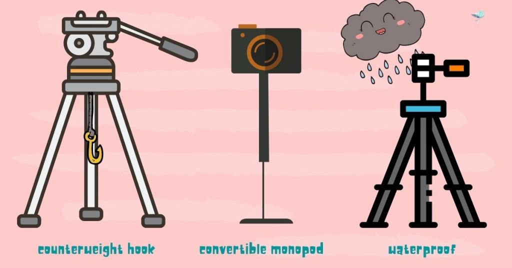 illustration of different additional features found on a tripod