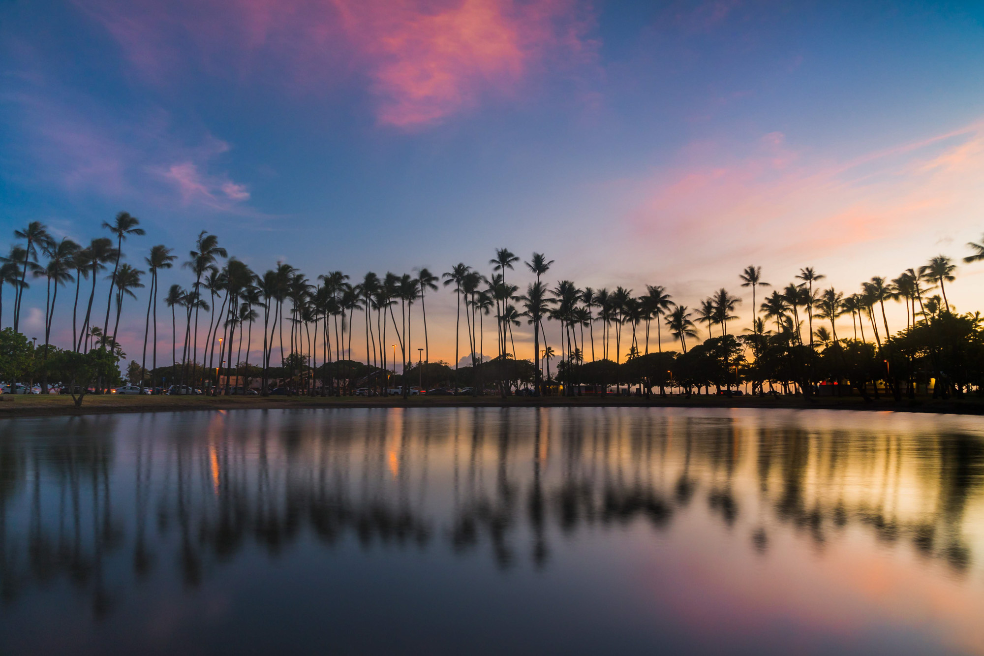 image of a lagoon reflection with palm trees surrounding the lagoon