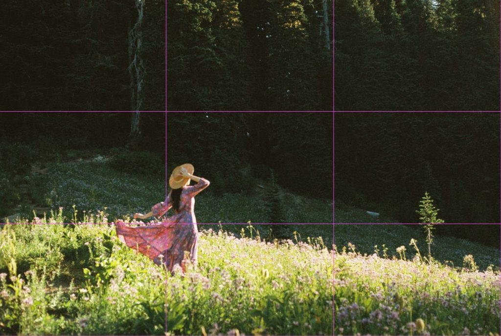 image of girl in pink dress in field of flowers with rule of third grid lines