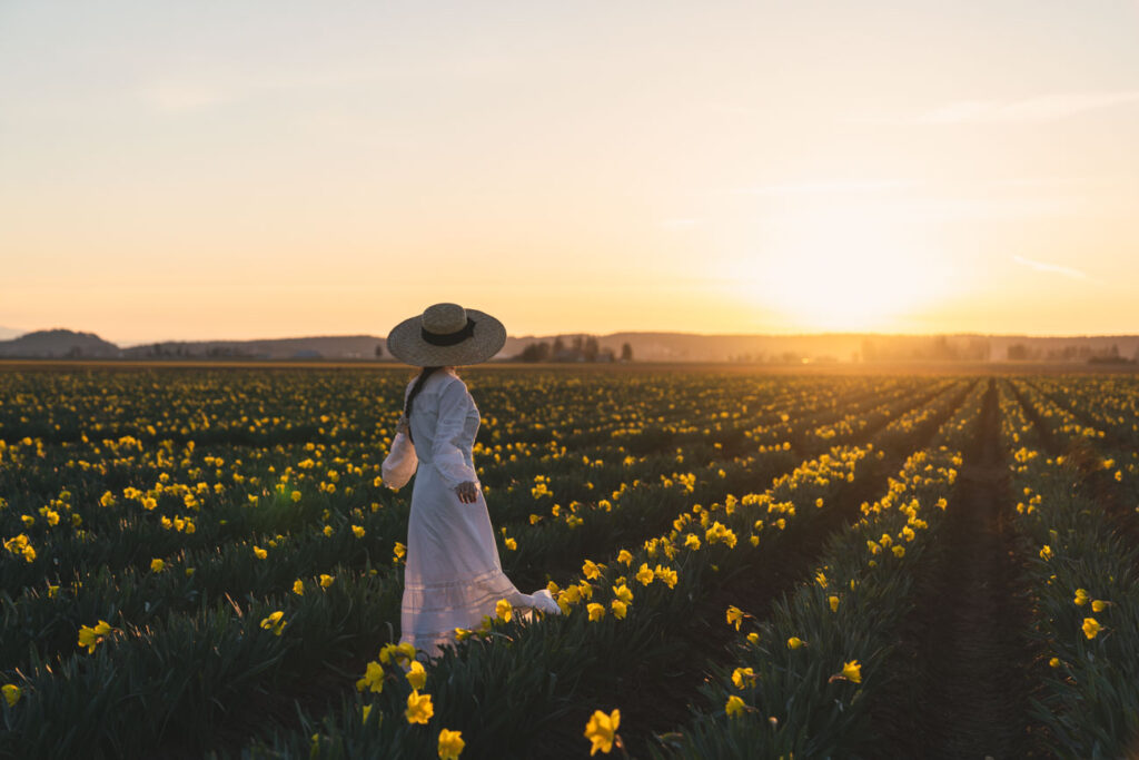 girl in white dress in daffodil field at sunset