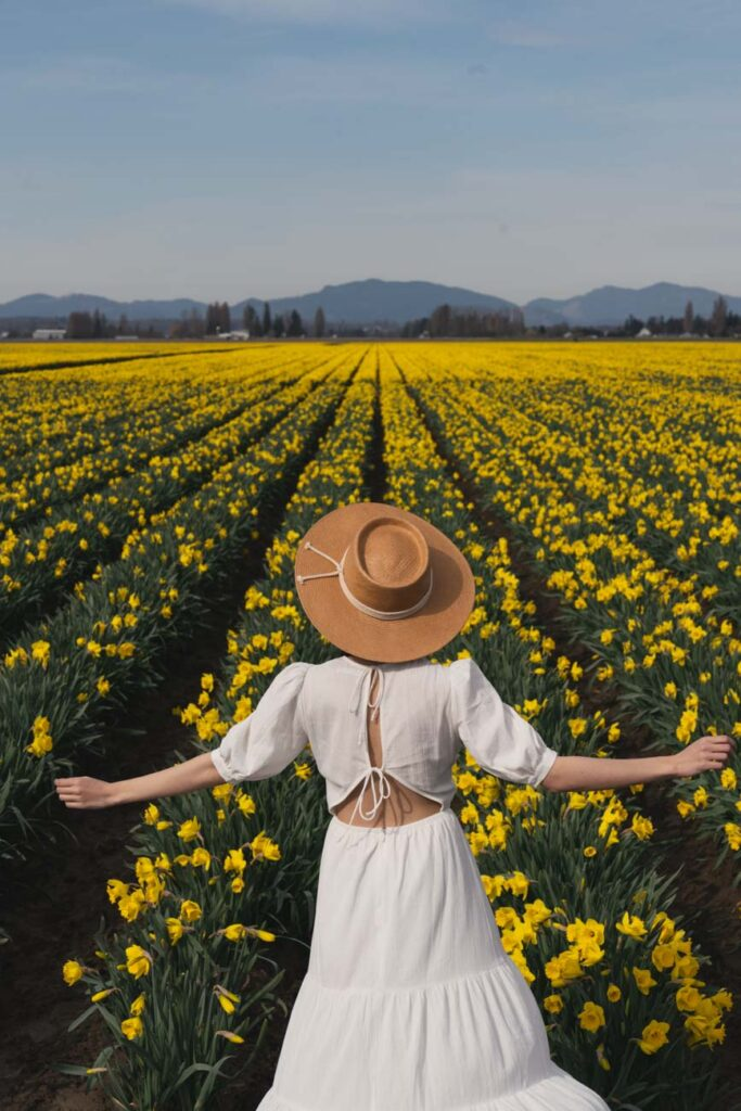 image of girl in white dress and hat standing in front of a daffodil field