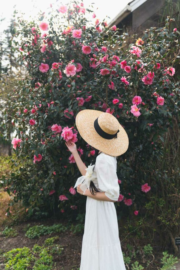 image of girl in white dress and hat in front of pink flowers