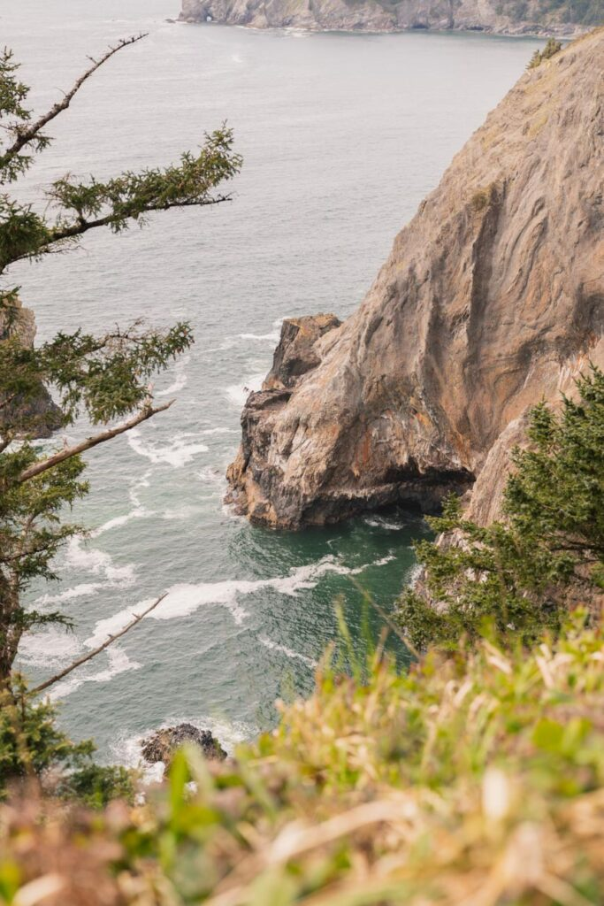 view from devils cauldron overlook trail in oswald west state park