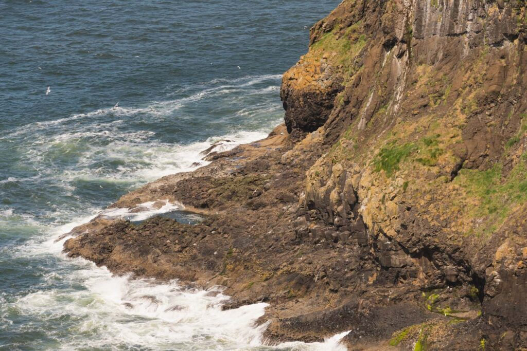 image of seacliffs on the oregon coast